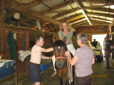 In the Barn Getting Ready for a Lesson